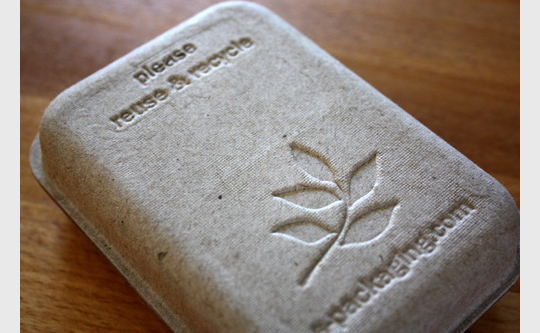 GreenKraft eco-stylish packaging
